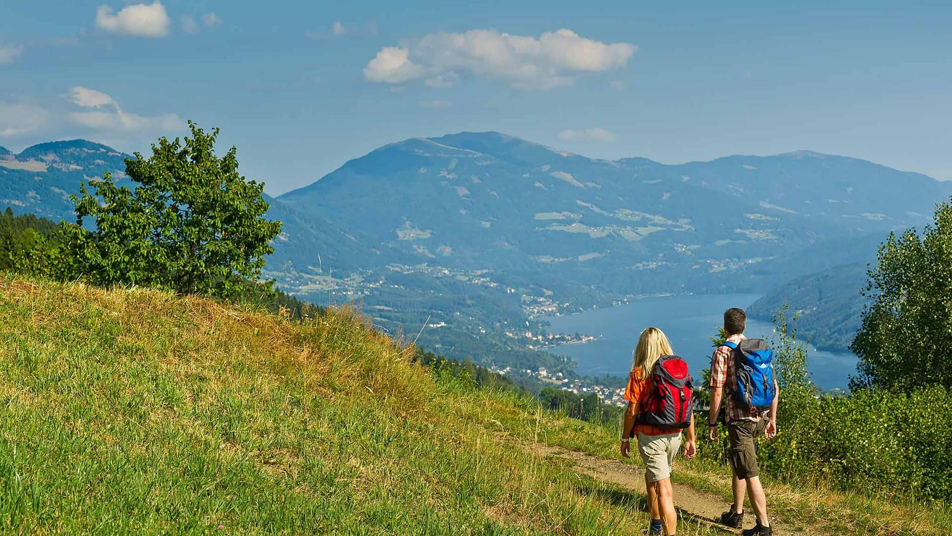 Alpe adria trail huhnersberg original