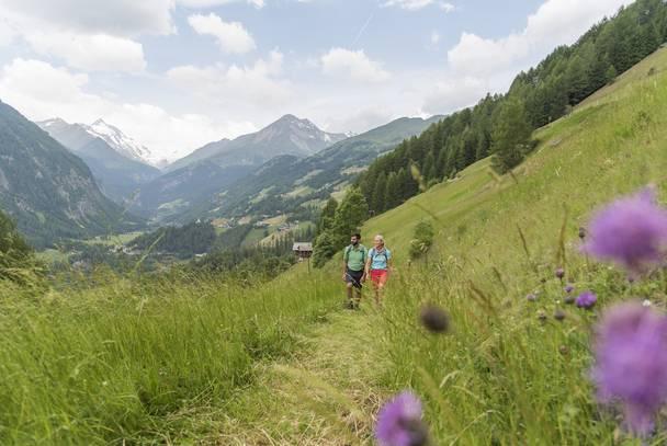 Alpe adria trail bei schachern mit blick auf den glockner original komprimiert