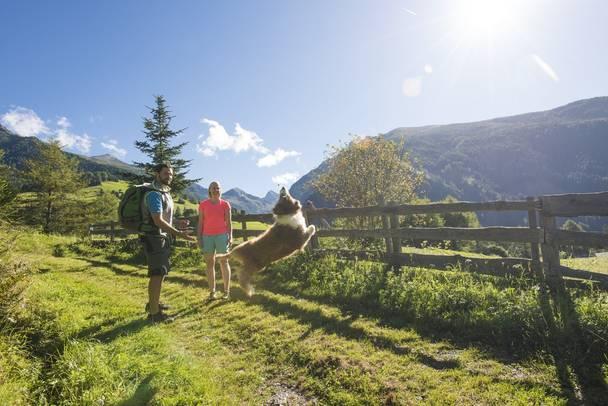 3922 Nationalpark Hohe Tauern Kaernten Werbung Franz Gerdl