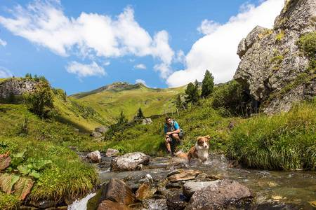 Hiking with your dog at the Alpe-Adria-Trail