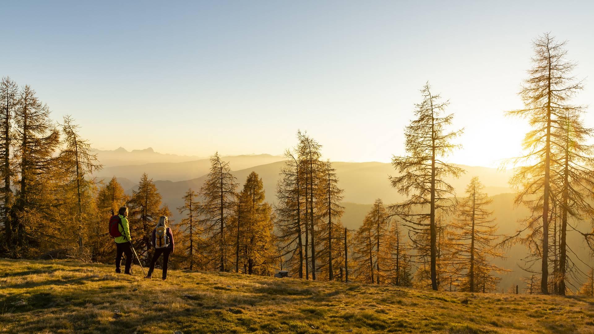 Alpe adria trail nockberge web