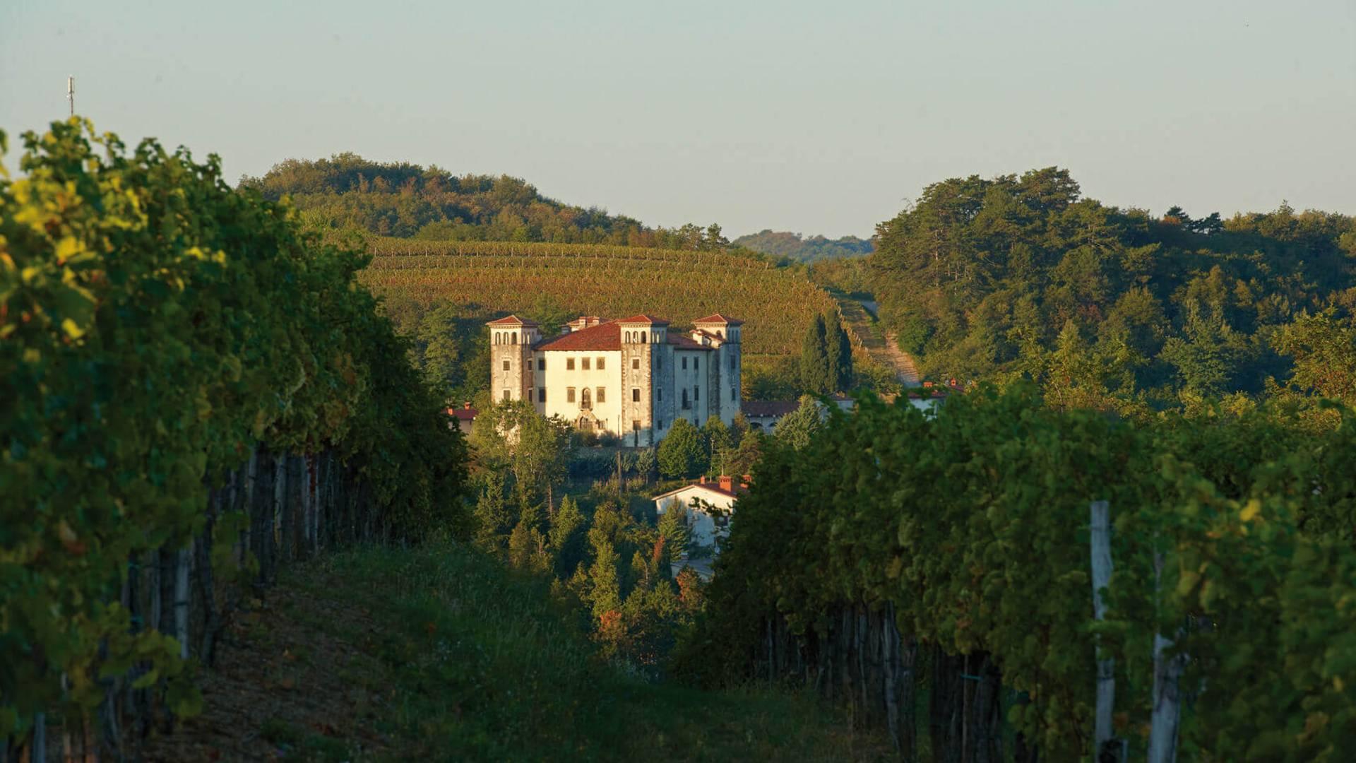 16 Dobrovo in Goriska Brda c Slowenien Tourismus