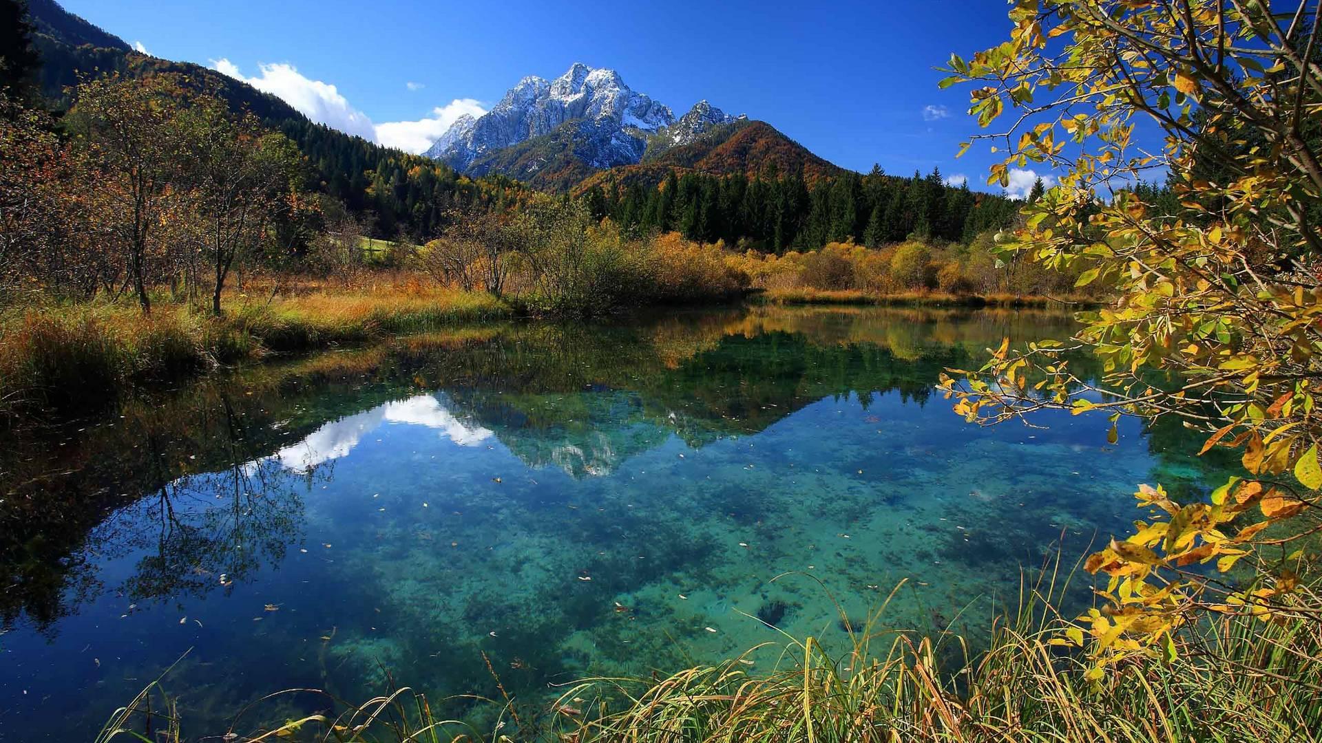 RT6 Naturreservat Zelenci c Krajnska Gora Tourist Board